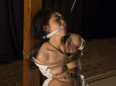 The Connection and the Image Kinbaku Today 1