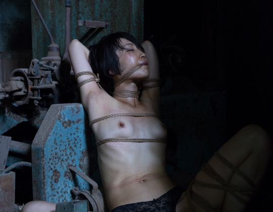 Three Photo Sets by Hajime Kinoko Kinbaku Today 5